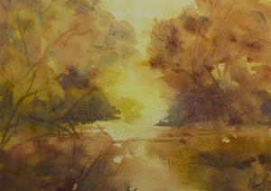 Golden light by Margaret Coxall