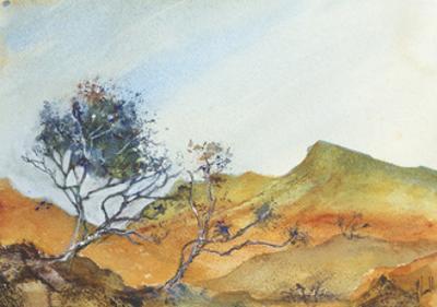 Tenacity by Margaret Coxall