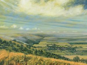 Late Summer on the Downs at Poynings, 1995 by Margaret Hartnett