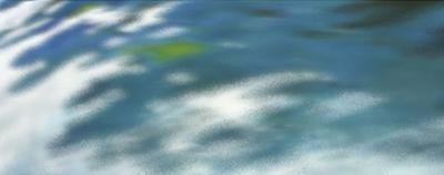 Sea Spray by Margaret Juul