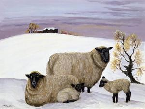 Sheep in Winter by Margaret Loxton