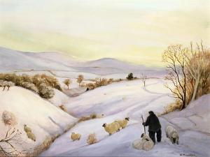 Sheep on the Ridge by Margaret Loxton