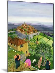 St. Paul de Vence by Margaret Loxton