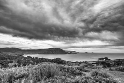 Bruny Island 1 by Margaret Morgan