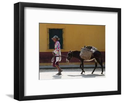 Elderly Woman Walking with Her Donkey