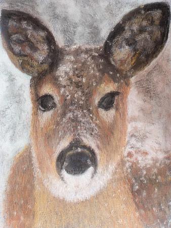 Young Deer in Winter, 2017