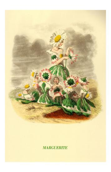 Marguerite--Art Print