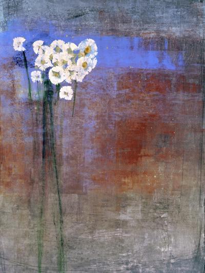 Marguerites 1-Maeve Harris-Premium Giclee Print