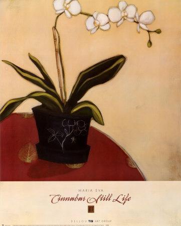 Cinnabar Still Life II
