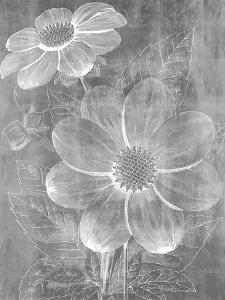 Chalky Blooms by Maria Mendez