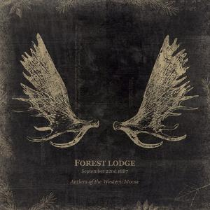 Forest Lodge by Maria Mendez