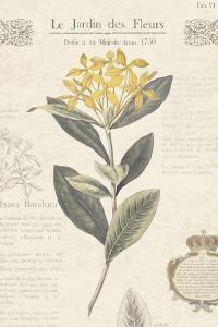Le Jardin des Fleurs I by Maria Mendez
