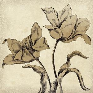 Paper Tulip I by Maria Mendez