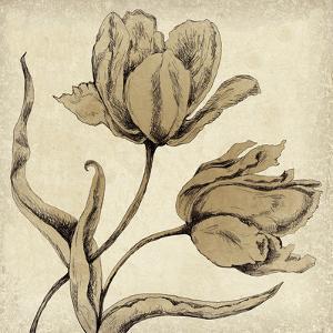 Paper Tulip II by Maria Mendez