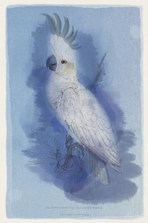maria-mendez-paradise-blue-ii