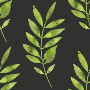 Fern Leaf on Dark Background by Maria Mirnaya