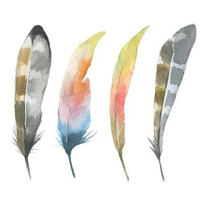 Set of Watercolor Bird Feathers