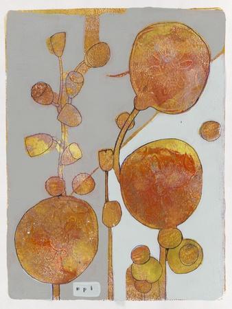 Orange Seed Pods 3