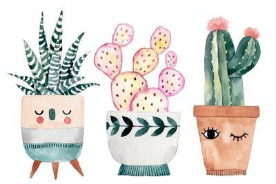 Watercolor Hand-Drawn Illustration with Cactus and Succulents. Green House Plants Illustrations. Cu