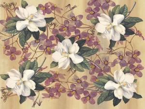 Botanic Magnolia by Maria Trad
