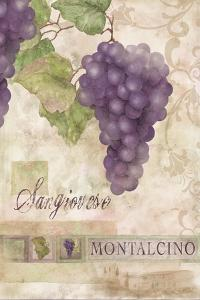 Montalcino Sangiovese 1 by Maria Trad