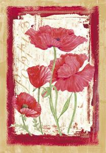 Poppies by Maria Trad