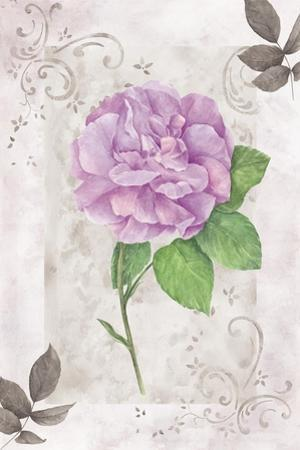 Rose 2 by Maria Trad