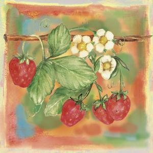 Strawberry by Maria Trad