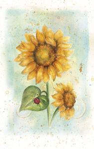 Sunflower by Maria Trad