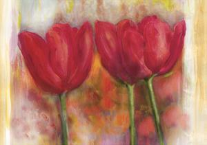 Tulips 2003 by Maria Trad