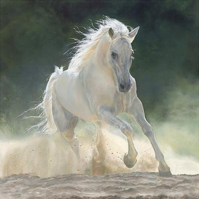 Beautiful Horses Artwork For Sale Prints And Posters Art Com
