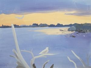 Le Rhone au Gabian, 1987 by Marie Hugo
