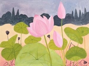 Lotus in the Garrigue, 1984 by Marie Hugo