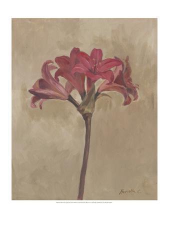 Blooms & Stems III