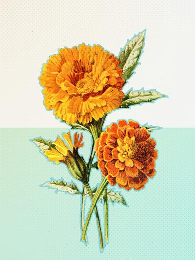 Marigold Yellow--Art Print