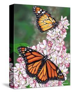 Monarch by Marilyn Barkhouse