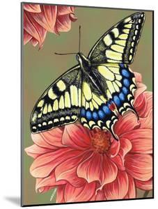 Yellow Swallowtail by Marilyn Barkhouse