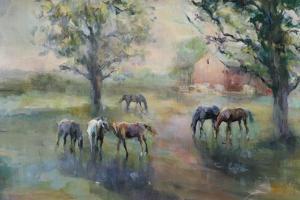 Daybreak on the Farm Crop II by Marilyn Hageman