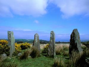 Druid Circle, Ardgroom Outward, County Cork, Ireland by Marilyn Parver