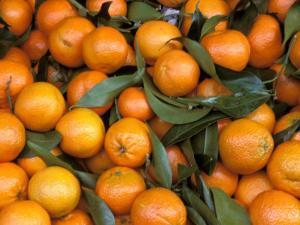 Oranges, Nasch Market, Kettenbrucke, Austria by Marilyn Parver