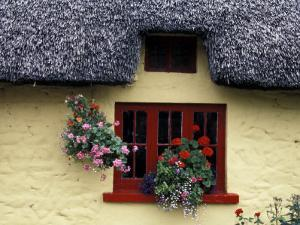 Thatched Cottage with Red Window, Adare, Limerick, Ireland by Marilyn Parver