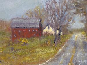 Back Road Barn I by Marilyn Wendling