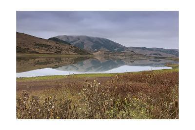 Marin County Landscape in Fall-Henri Silberman-Photographic Print