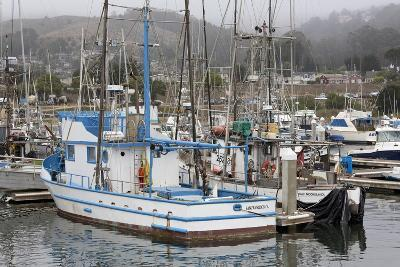 Marina in Pillar Point Harbor, Half Moon Bay, California, United States of America, North America-Richard Cummins-Photographic Print