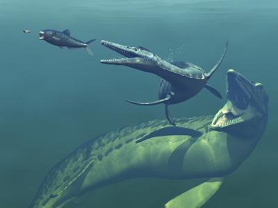 Marine Predators of the Cretaceous Period-Stocktrek Images-Photographic Print