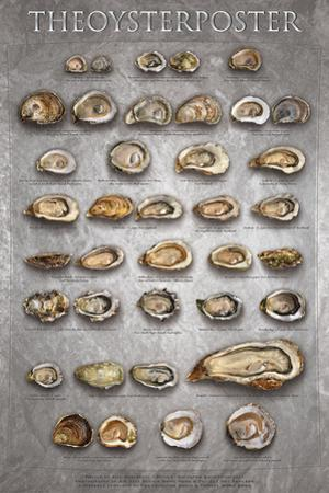 The Oyster Poster by Marinelli