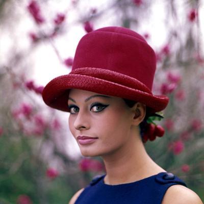 Portrait of Sophia Loren by Mario de Biasi
