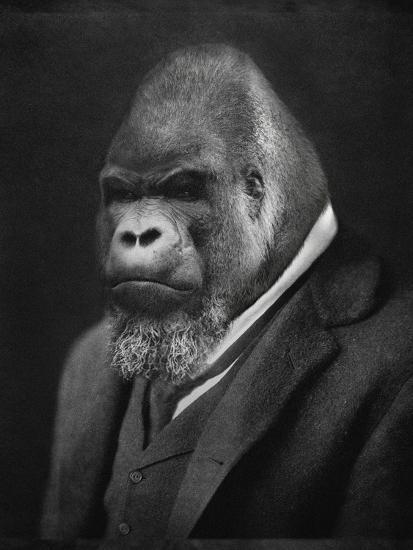 Mario Gorillini-Grand Ole Bestiary -Art Print