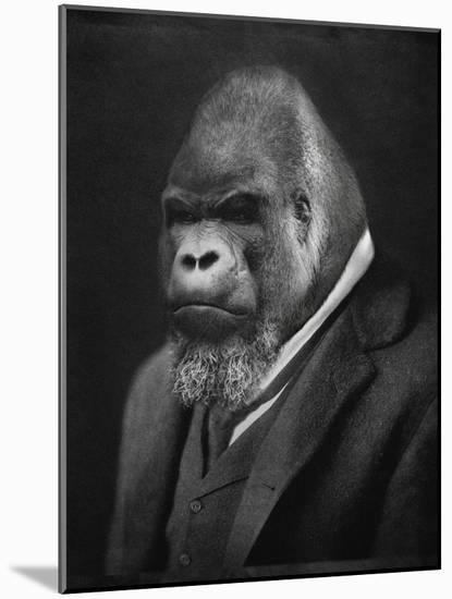 Mario Gorillini-Grand Ole Bestiary-Mounted Art Print