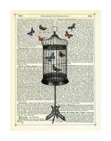 Bird Cage & Butterflies